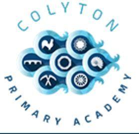 Colyton初级学院